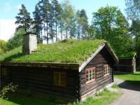 Зеленая крыша — 100 фото идей создания своими руками